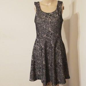 Express Women Lace Dress